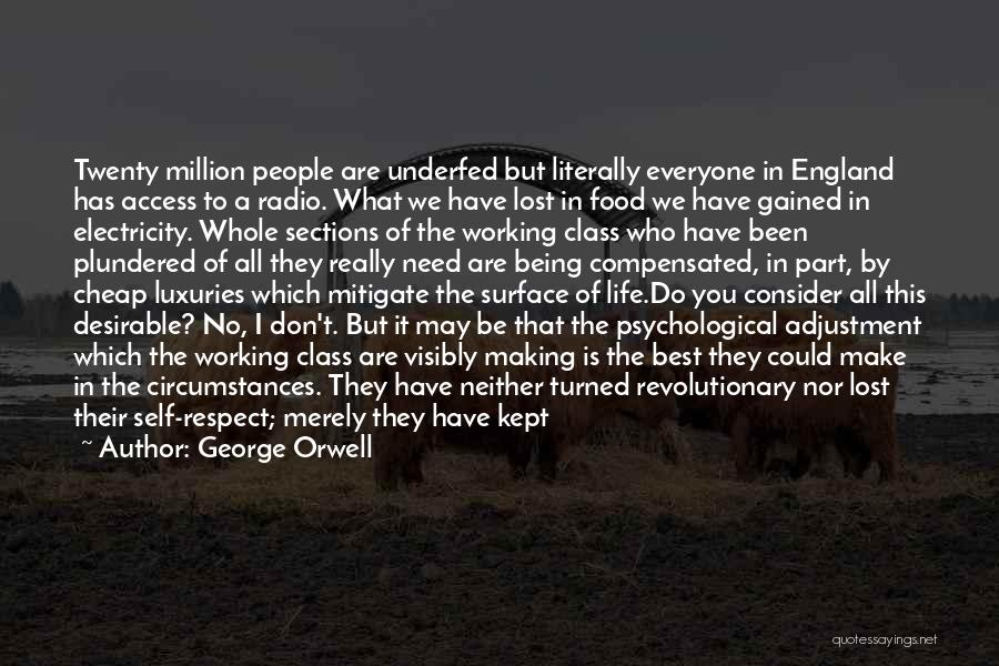 This Is England Best Quotes By George Orwell