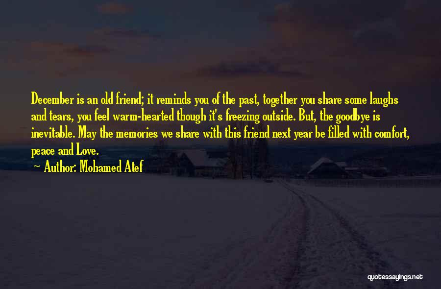 This Is My Goodbye Quotes By Mohamed Atef