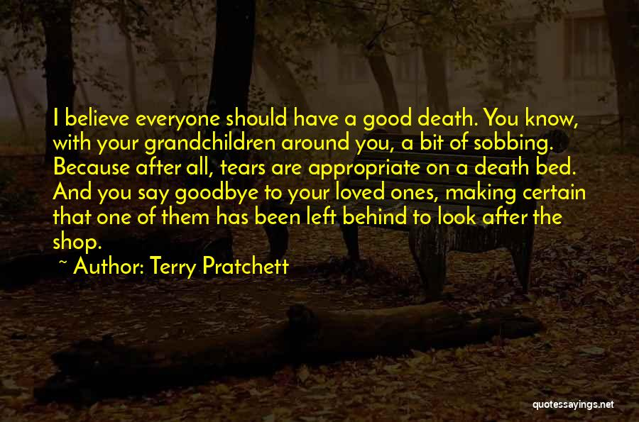 This Is My Goodbye Quotes By Terry Pratchett