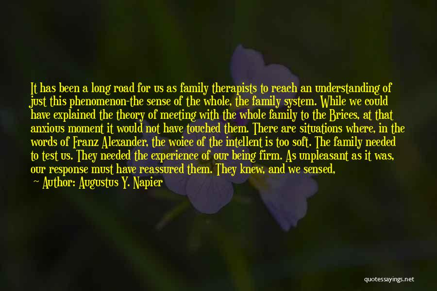 This Is Our Family Quotes By Augustus Y. Napier