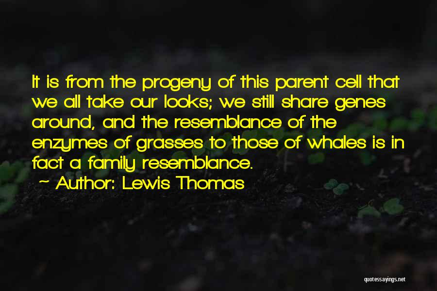 This Is Our Family Quotes By Lewis Thomas