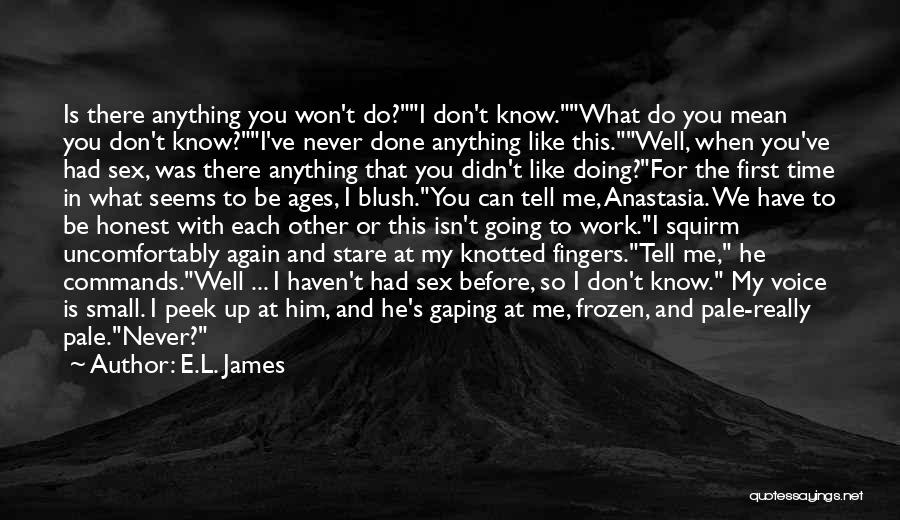This Isn't Going To Work Quotes By E.L. James