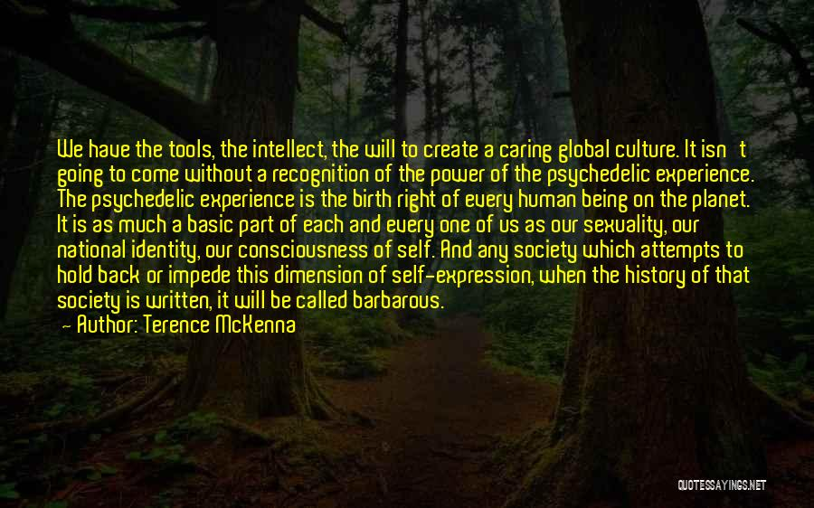 This Isn't Right Quotes By Terence McKenna