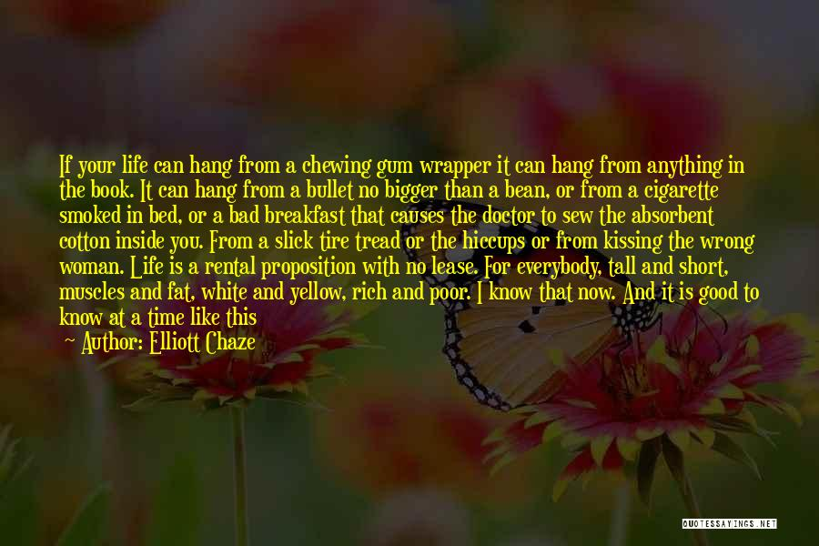 This Life Is Short Quotes By Elliott Chaze