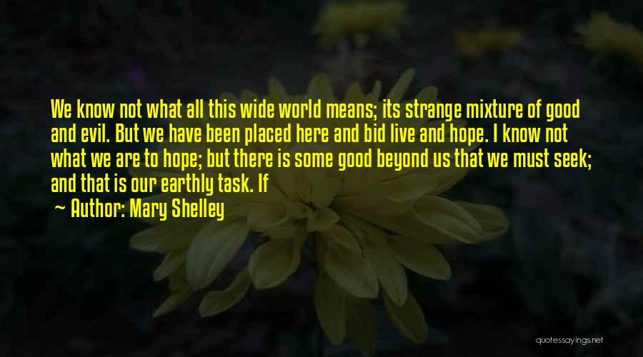 This World Quotes By Mary Shelley