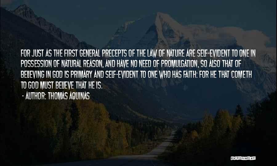 Thomas Aquinas Quotes 1332414