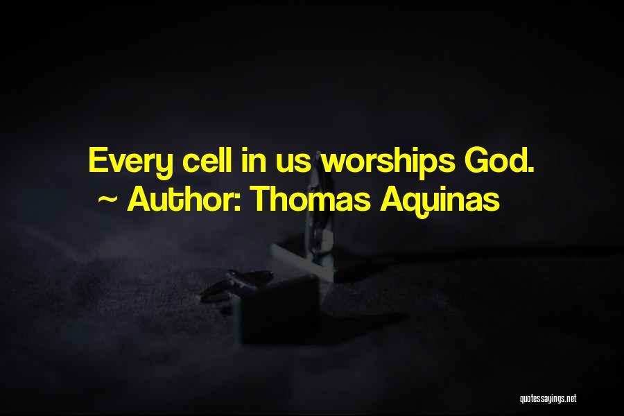 Thomas Aquinas Quotes 2112547