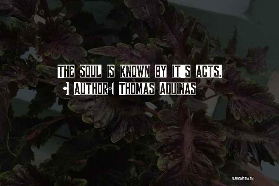 Thomas Aquinas Quotes 757970