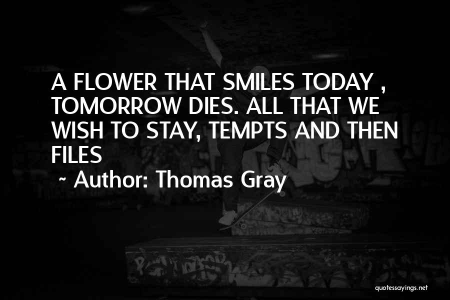 Thomas Gray Quotes 117851