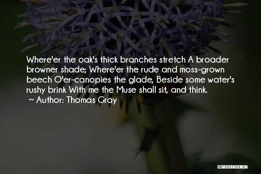 Thomas Gray Quotes 1477851