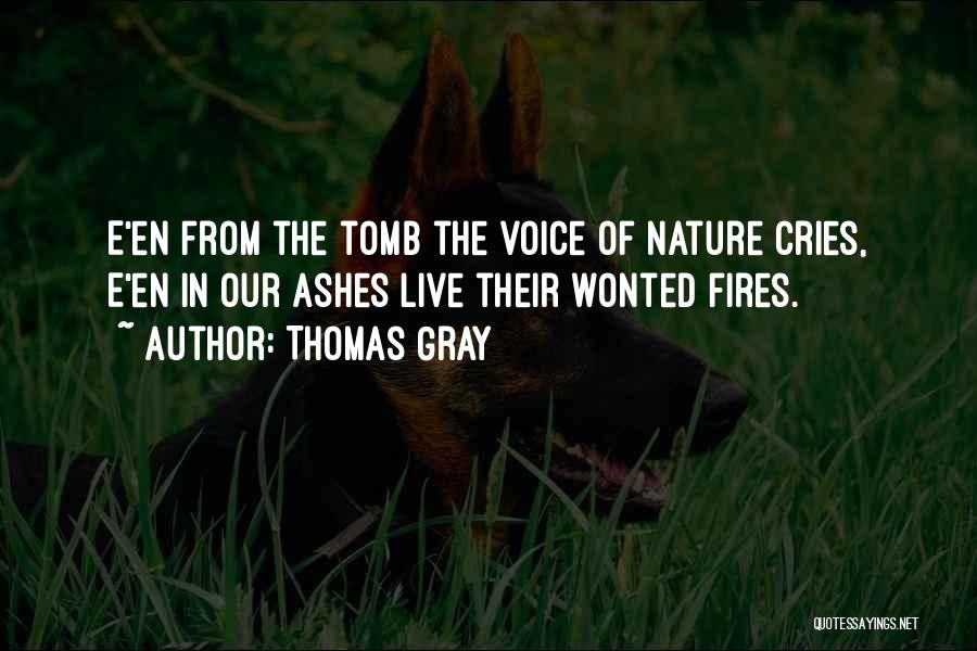 Thomas Gray Quotes 1689279