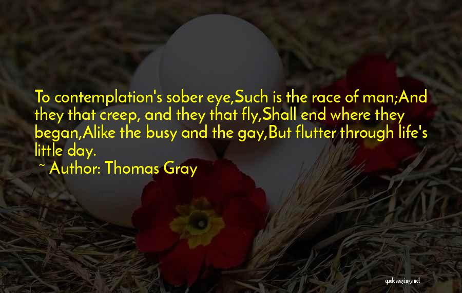 Thomas Gray Quotes 541822