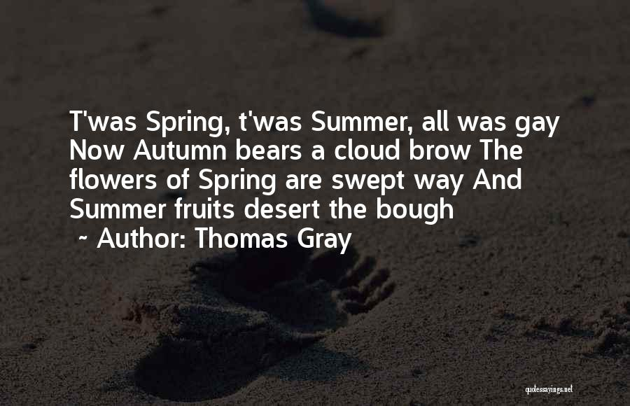 Thomas Gray Quotes 87405