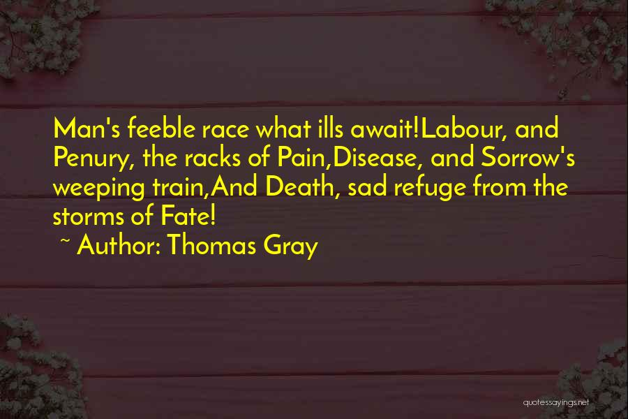 Thomas Gray Quotes 965954