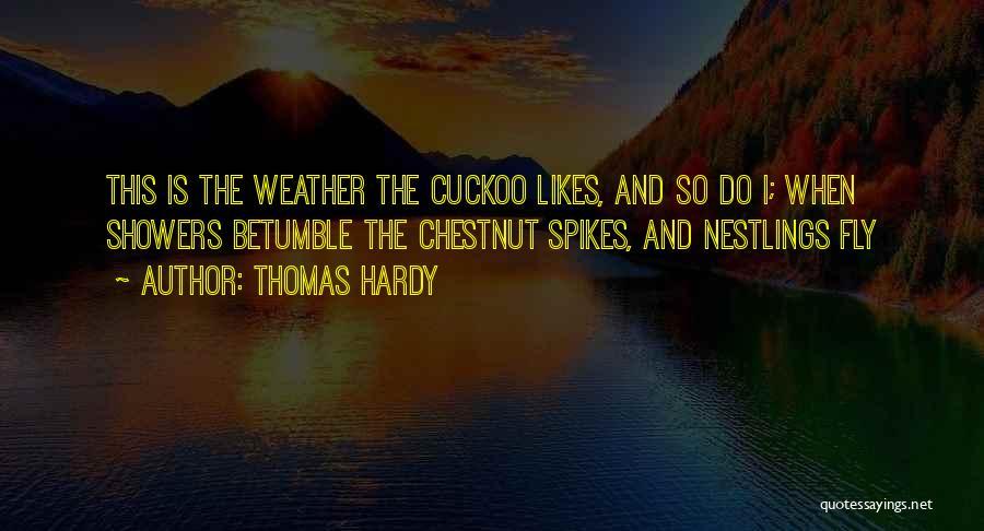 Thomas Hardy Quotes 1872883