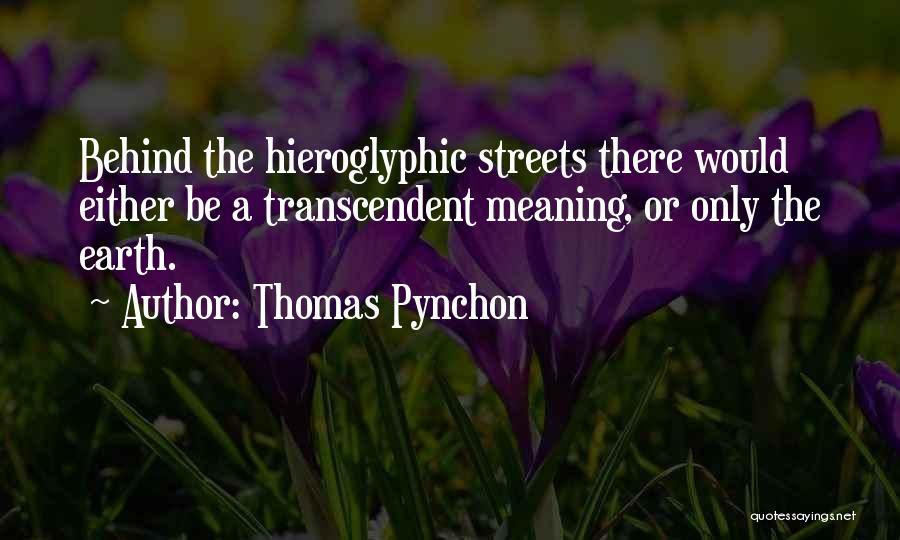 Thomas Pynchon Quotes 1102915