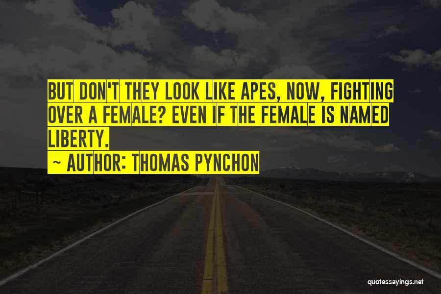 Thomas Pynchon Quotes 1595284