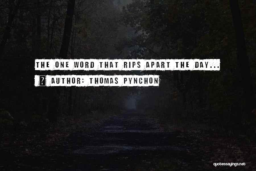 Thomas Pynchon Quotes 1597093