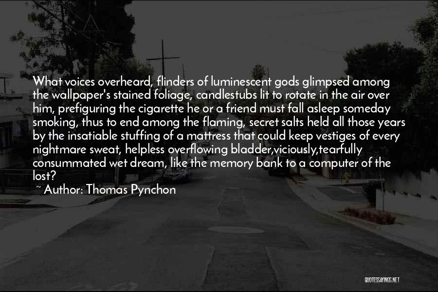 Thomas Pynchon Quotes 1744245