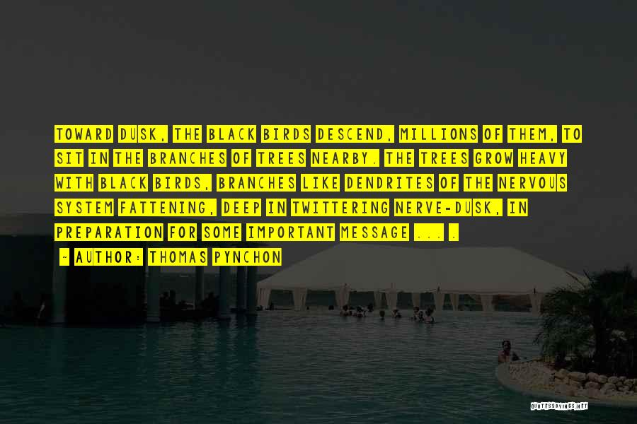 Thomas Pynchon Quotes 2169568