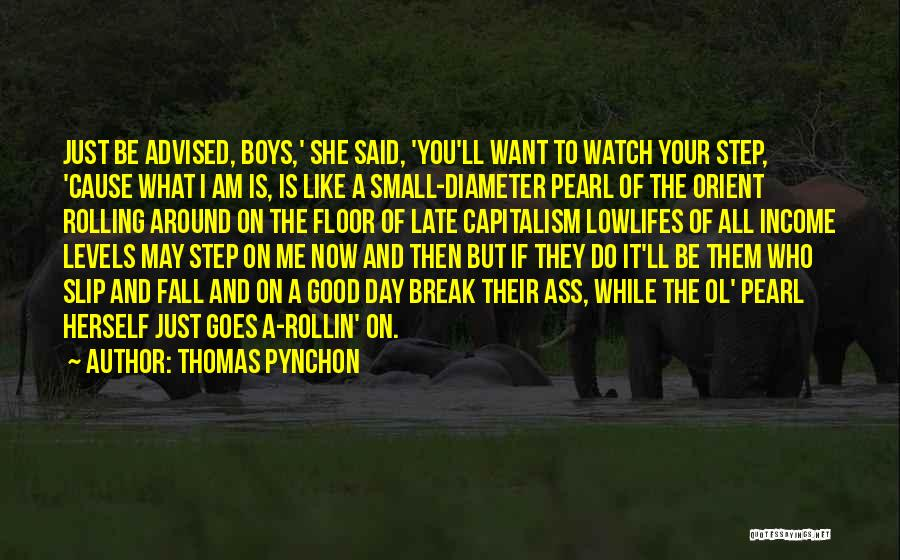 Thomas Pynchon Quotes 2194476
