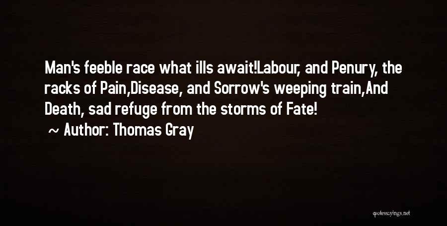 Thomas The Train Quotes By Thomas Gray