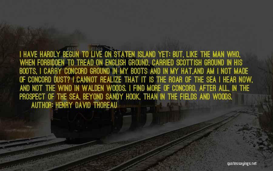 Thoreau Walden Woods Quotes By Henry David Thoreau