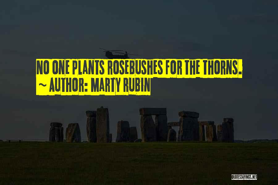 Thorns Quotes By Marty Rubin