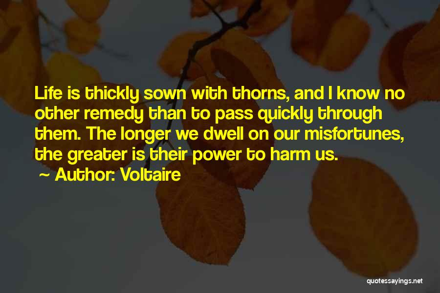 Thorns Quotes By Voltaire