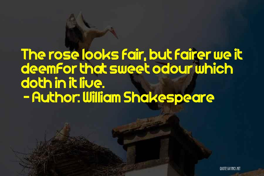 Thorns Quotes By William Shakespeare