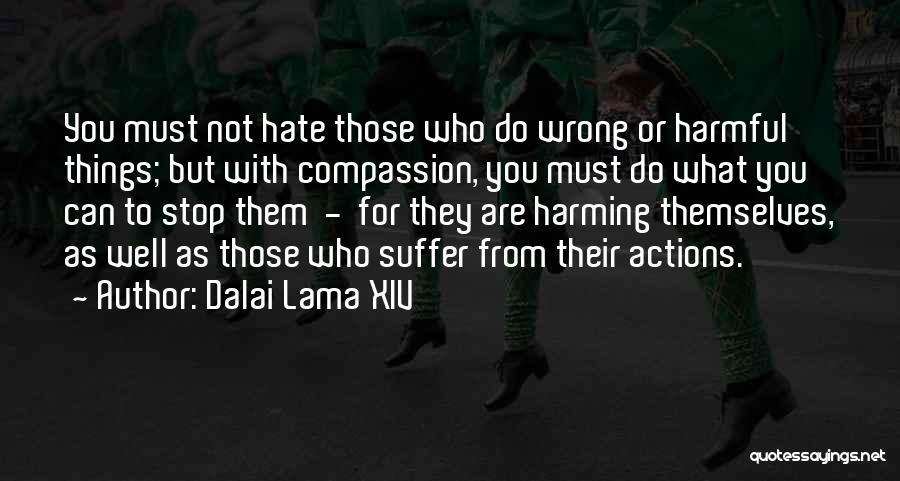Those Who Do Wrong Quotes By Dalai Lama XIV