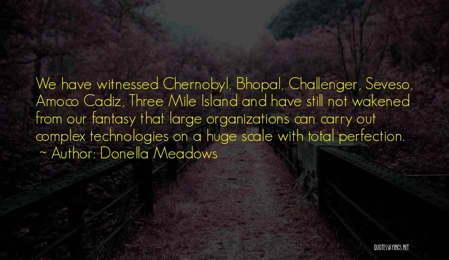 Three Mile Island Quotes By Donella Meadows