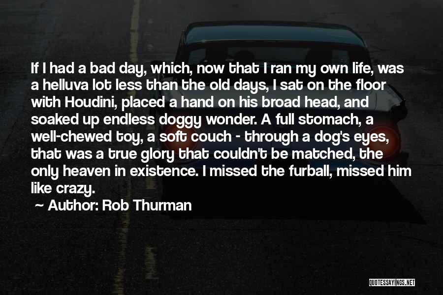 Through My Eyes Quotes By Rob Thurman