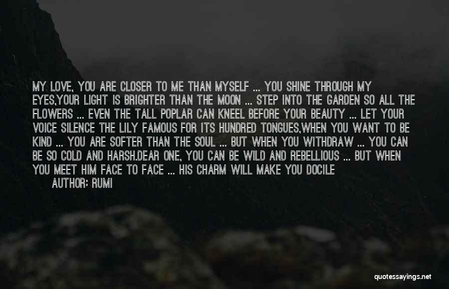 Through My Eyes Quotes By Rumi