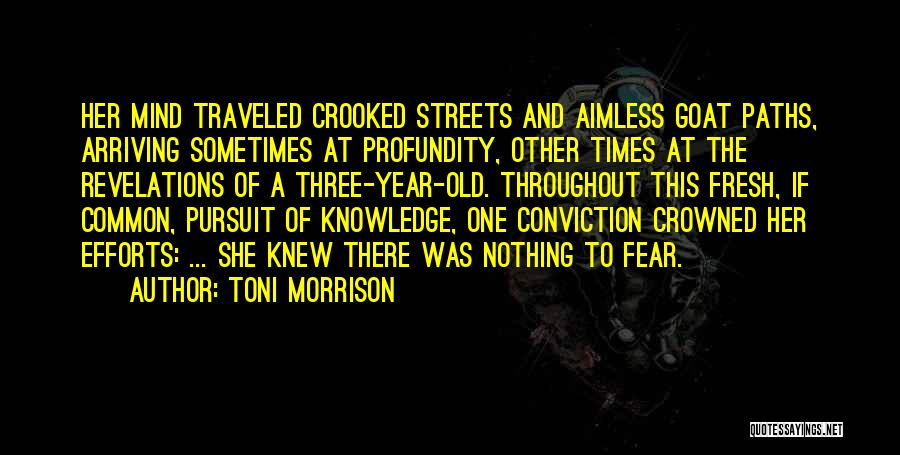 Throughout The Year Quotes By Toni Morrison