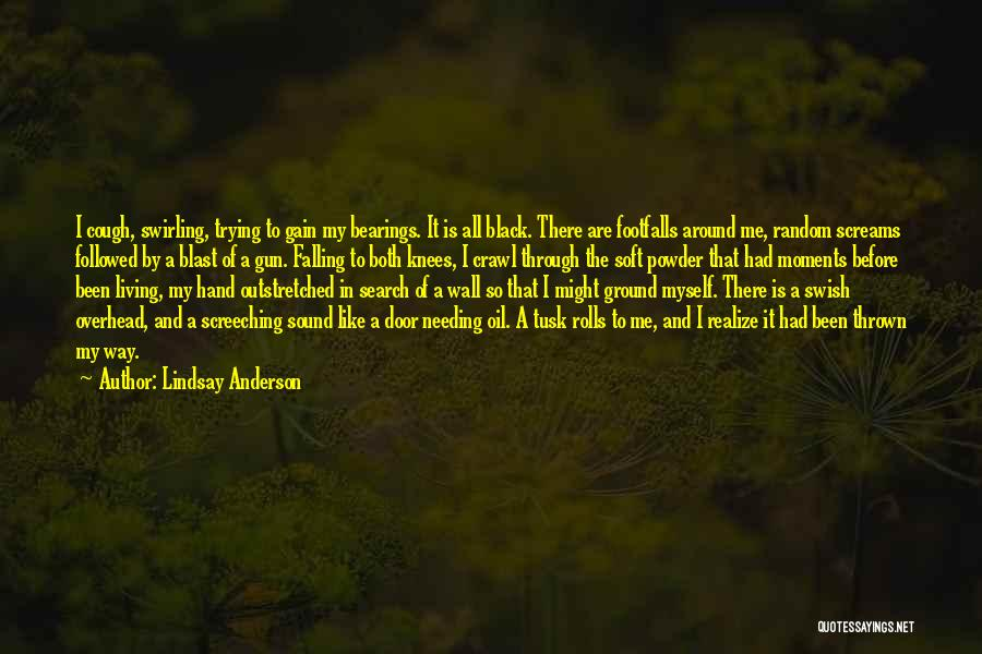 Thrown Around Quotes By Lindsay Anderson