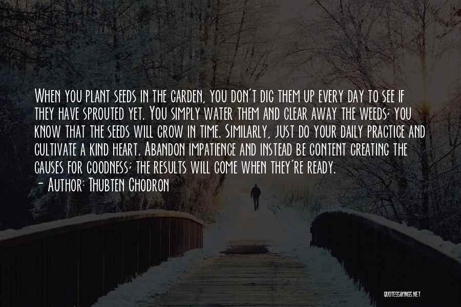 Thubten Chodron Quotes 1699033