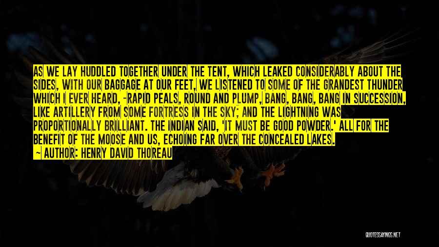 Thunder Lightning Quotes By Henry David Thoreau