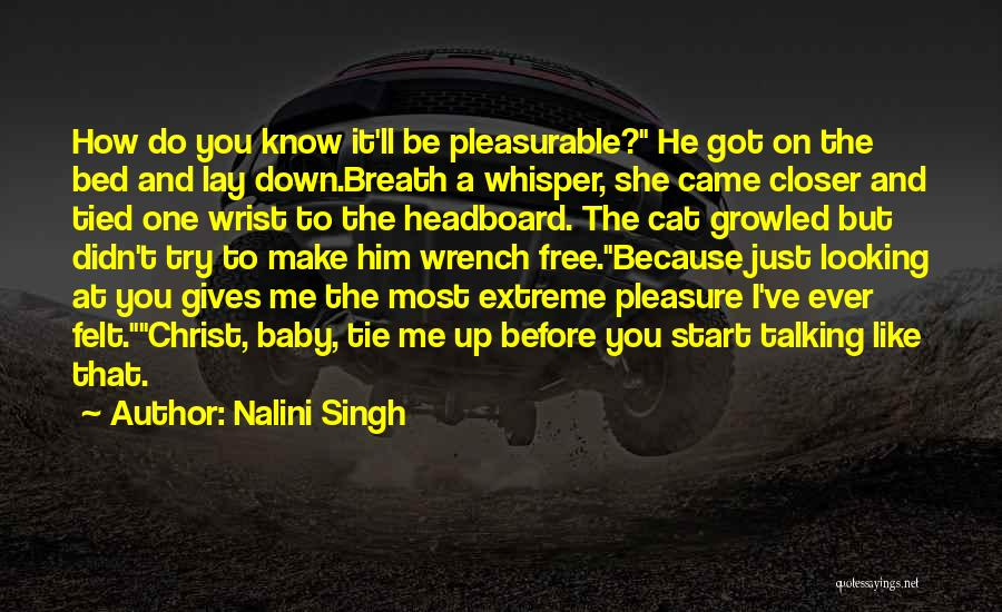Tie Me Up Quotes By Nalini Singh