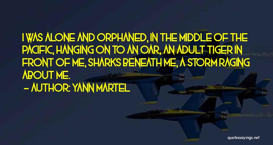 Tiger Sharks Quotes By Yann Martel