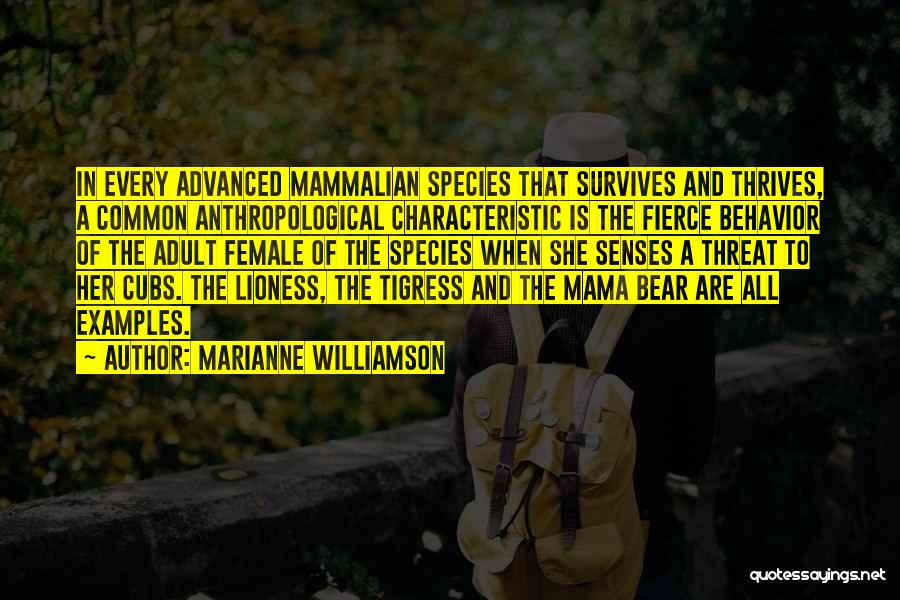 Tigress Quotes By Marianne Williamson