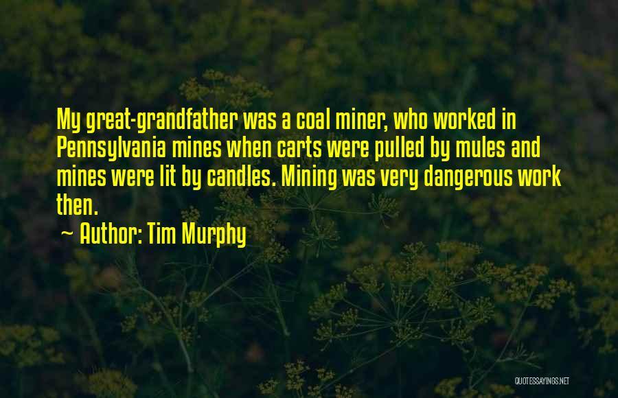 Tim Murphy Quotes 1667050