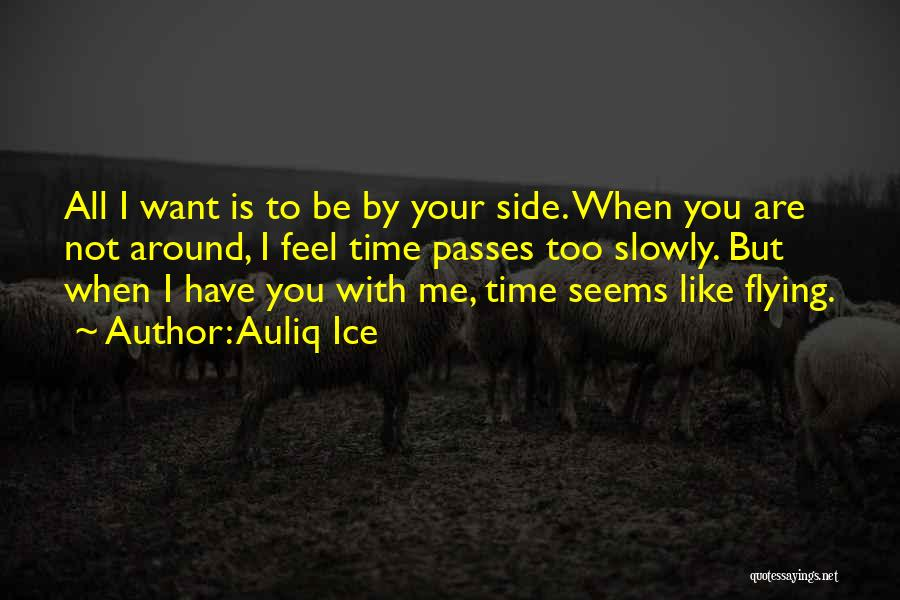 Time Flying And Love Quotes By Auliq Ice