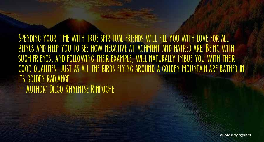 Time Flying And Love Quotes By Dilgo Khyentse Rinpoche
