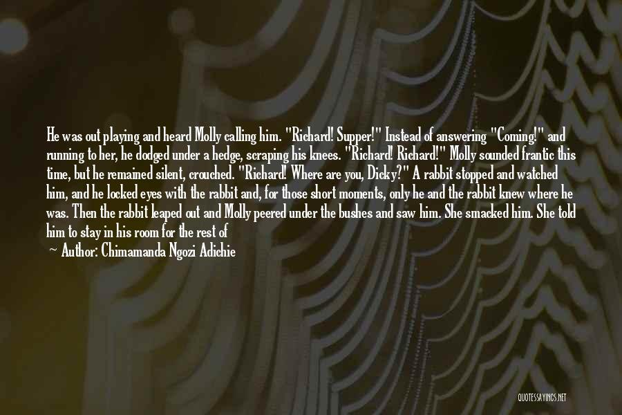 Time For Rest Quotes By Chimamanda Ngozi Adichie