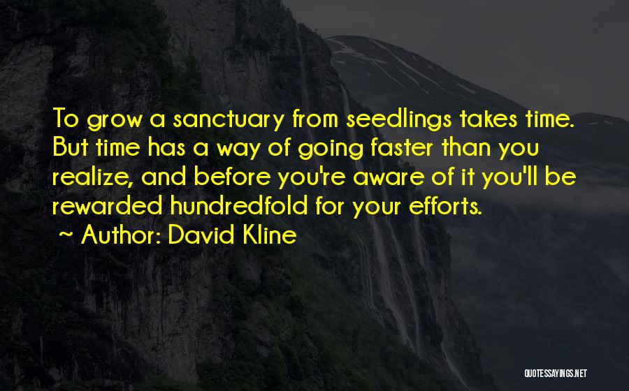 Time Going Faster Quotes By David Kline
