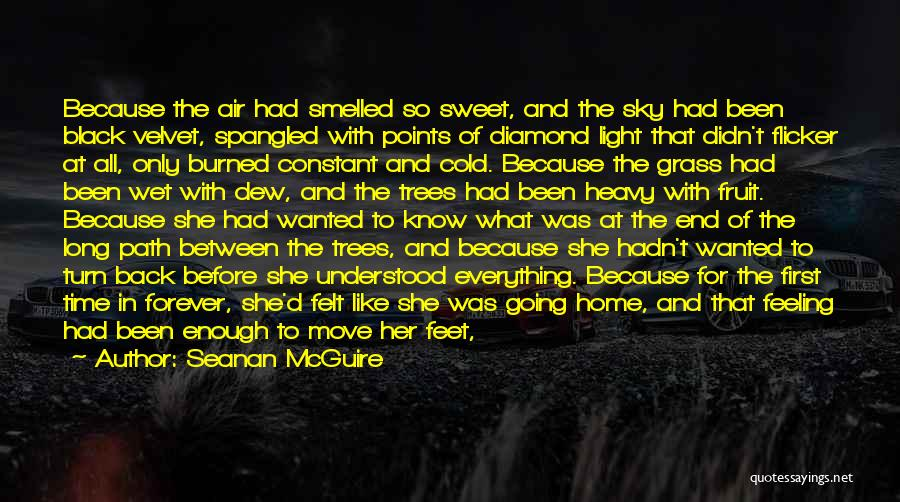 Time Going Faster Quotes By Seanan McGuire