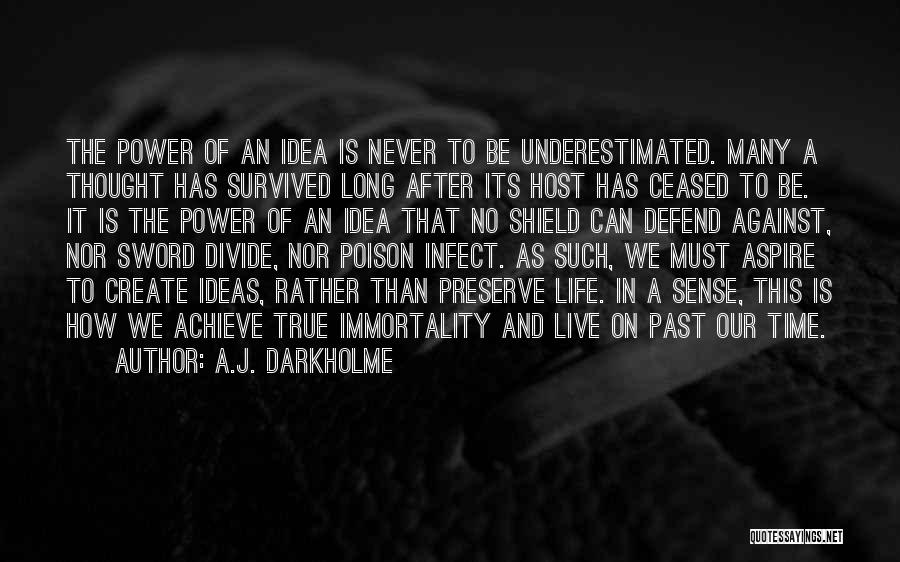 Time Has Past Quotes By A.J. Darkholme