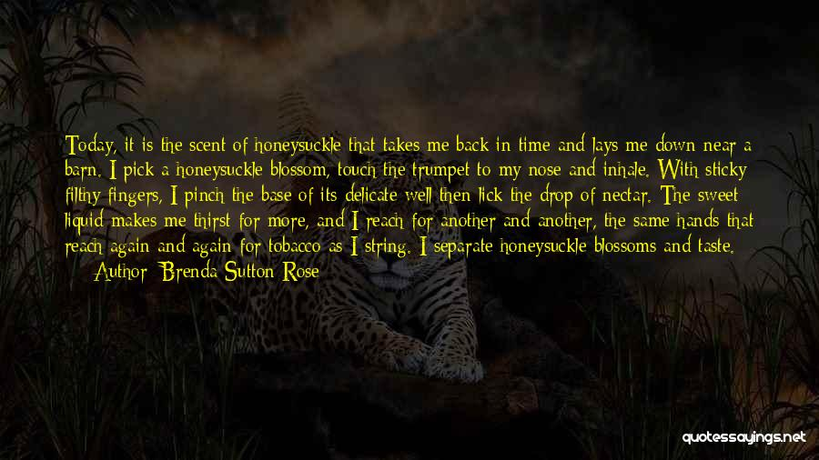 Time Is Near Quotes By Brenda Sutton Rose