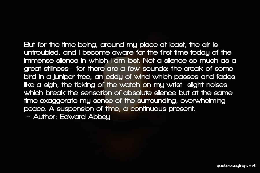 Time Ticking Quotes By Edward Abbey